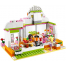 Фрэш-бар Хартлейк Сити (Lego Friends Juice Bar) 41035-lg